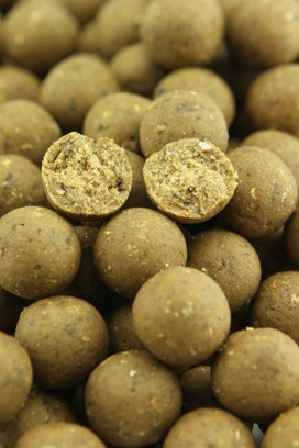 "NORTHERN BAITS BOILIES "" BLU MUSSEL "" 1 KG"